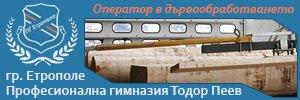 Професионална гимназия Тодор Пеев - Етрополе