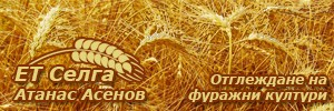 ЕТ СЕЛГА - АТАНАС АСЕНОВ